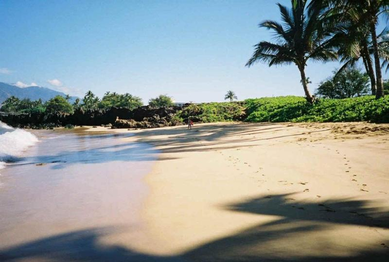 The Wailele Home is oceanfront and this is the beach - Elegant 2 bedroom Ocean/Beach front home  So. Maui - Kihei - rentals
