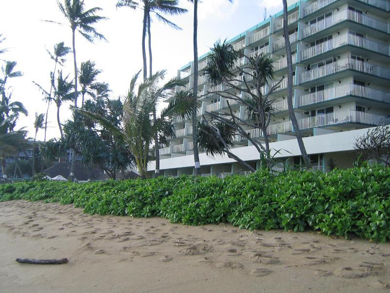 Punaluu 315 01Exterior-Oceanside - Punaluu, Oahu, Hawaii Beachfront Rental Lg Lani - Punaluu - rentals