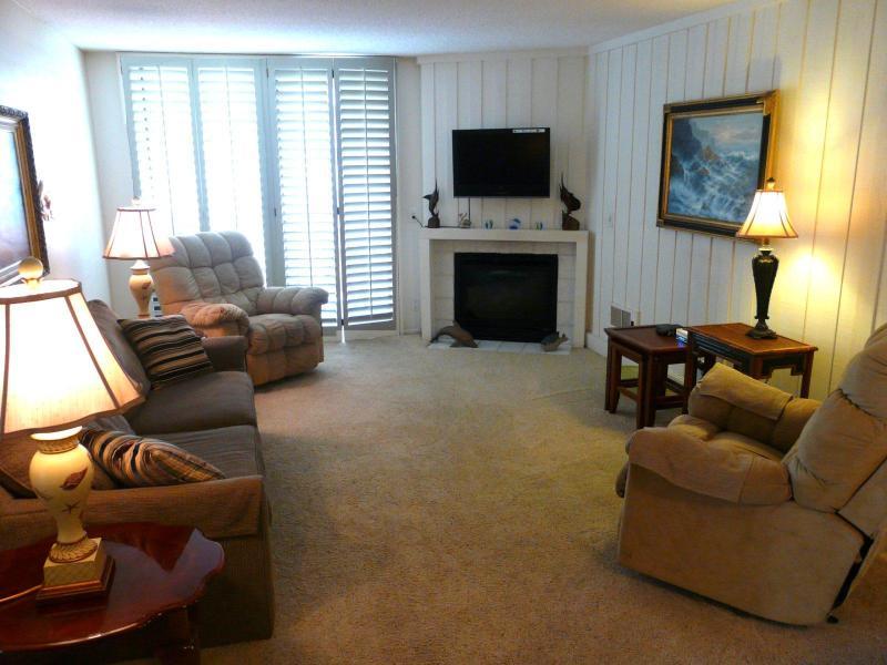 livingroom.1600.1200 - Breathtaking Ocean View at Gracie's Getaway - Oceanside - rentals