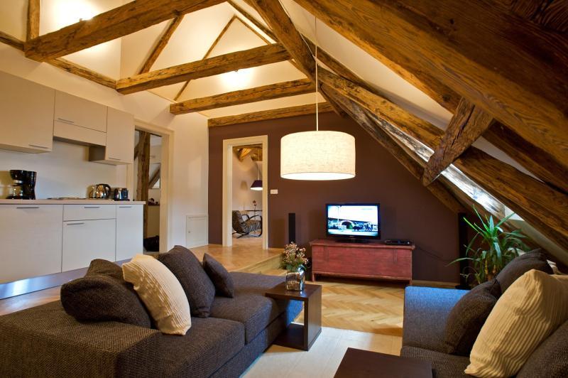 Enchanting Apartment - Enchanting One-Bedroom Apartment - Prague - rentals