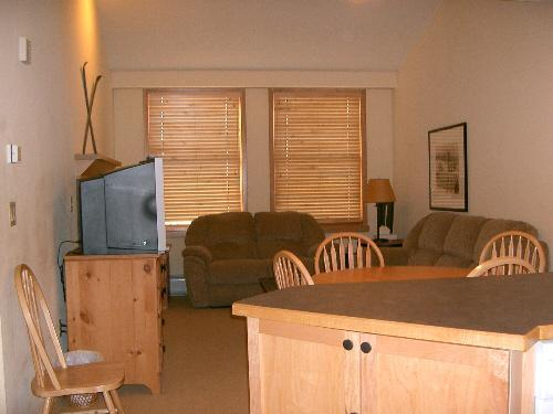 View as you walk into condo - Silvermill 1 BR Condo - Mountain View, Low Rates - Dillon - rentals