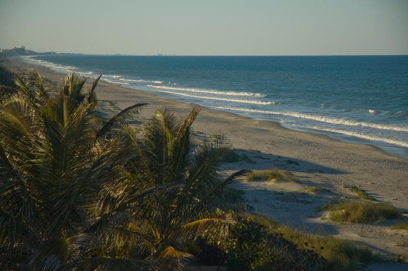 View of  beach directly behind Tuckaway - 1st Floor Ocean side w/Patio - Indialantic - rentals