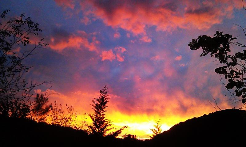 Forget the world as you watch the sunsets - Asheville's Euphoria Retreat Mountain Preserve - Marshall - rentals