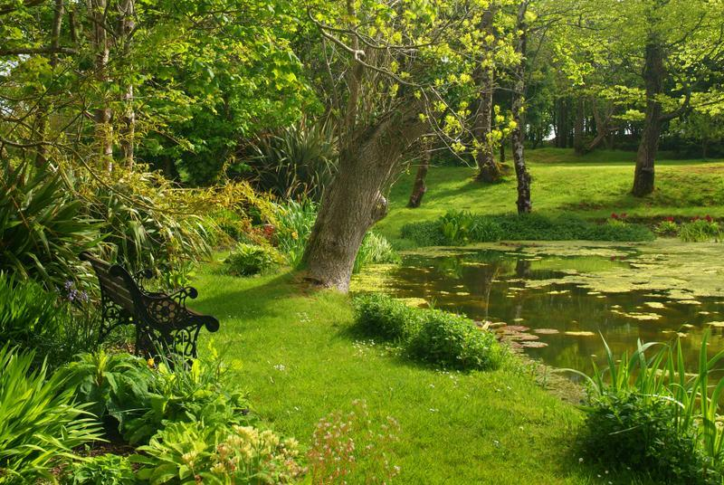 THE LILY POND AT DOWNE - Wistaria Cottage, Hartland, North Devon - Hartland - rentals