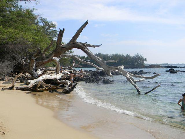 Beach 69 - Right down the road! - Puako - Across from Ocean - Island-style and Kid Friendly - Kawaihae - rentals