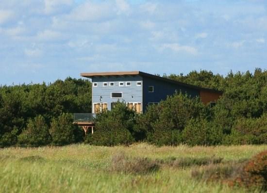 Cottage nestled in the beach pines - Modern Beach Cottage - Casa de Los Arboles - Westport - rentals