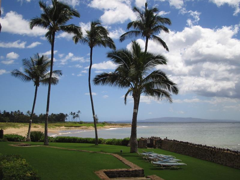 View South (left) - Oceanfront Paradise! Awesome Views! 3 Bed 2 Bath! - Kihei - rentals
