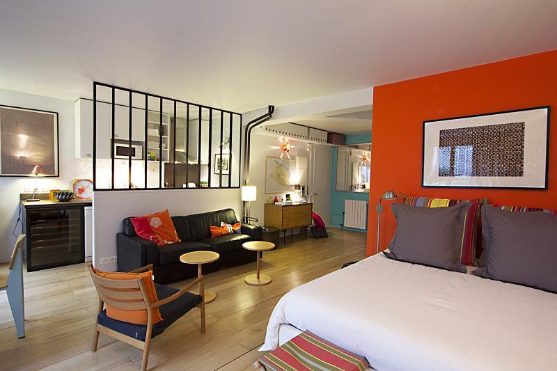 main living-1 - A Studio with Terrace - Notre Dame de Paris - Paris - rentals