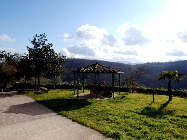 Borgo Anghiari - Orcio - Image 1 - Anghiari - rentals