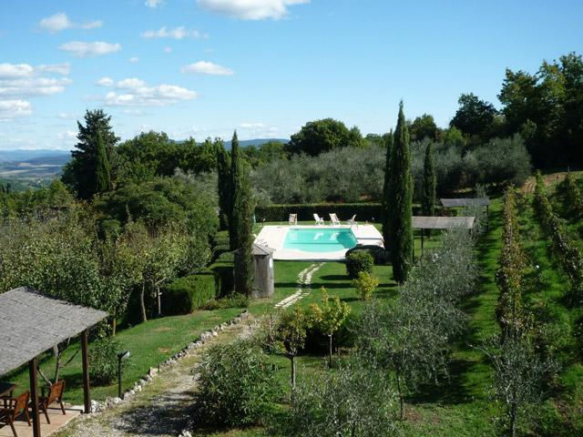 The pool is set next to the vineyard, a short distance from the house - Agriturismo Elvira  - Pinolo - Casole d Elsa - rentals