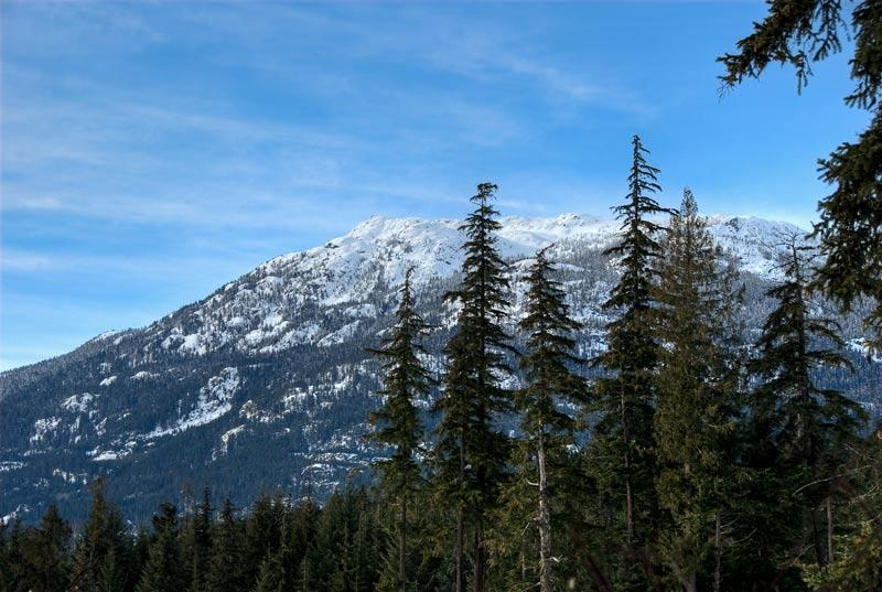 7---4644-Blackcomb-Way view 1WEB - Beautiful Whistler Wonderland Townhome - Whistler - rentals