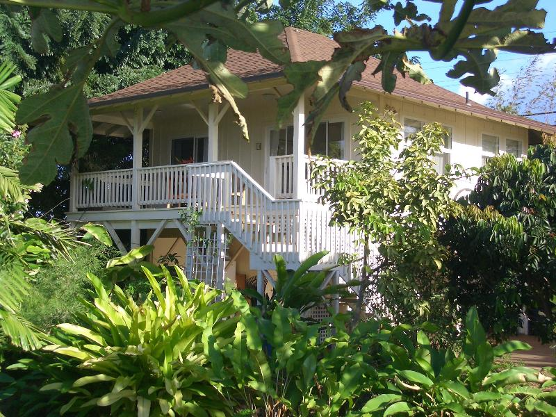 Cottage nested in the tropical trees - Maui by the Sea cottage - Paia - rentals