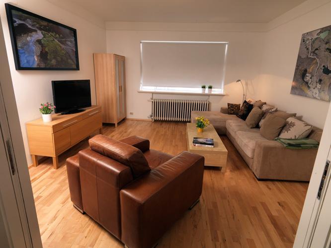 Living room - City Central Apartment - Reykjavik - rentals