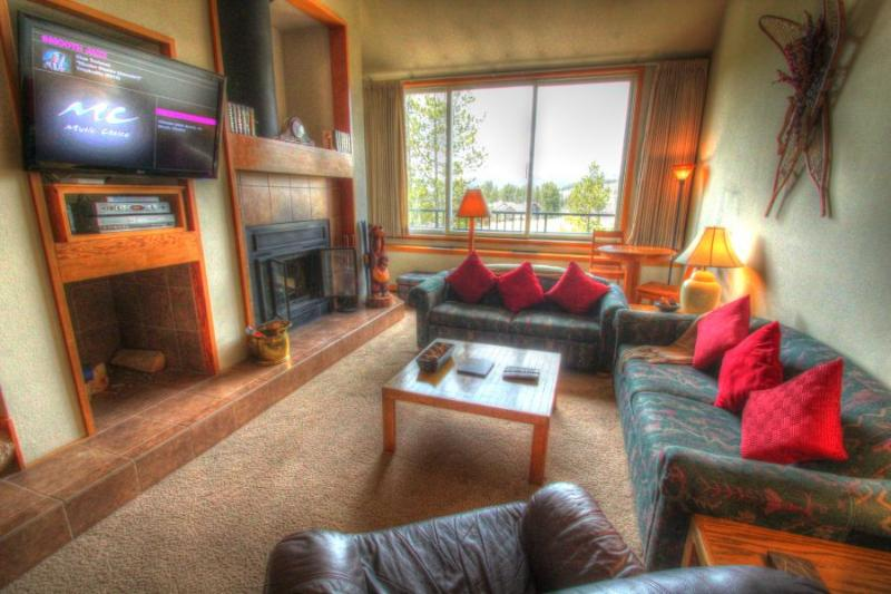 2130 Pines - West Keystone - Image 1 - Keystone - rentals