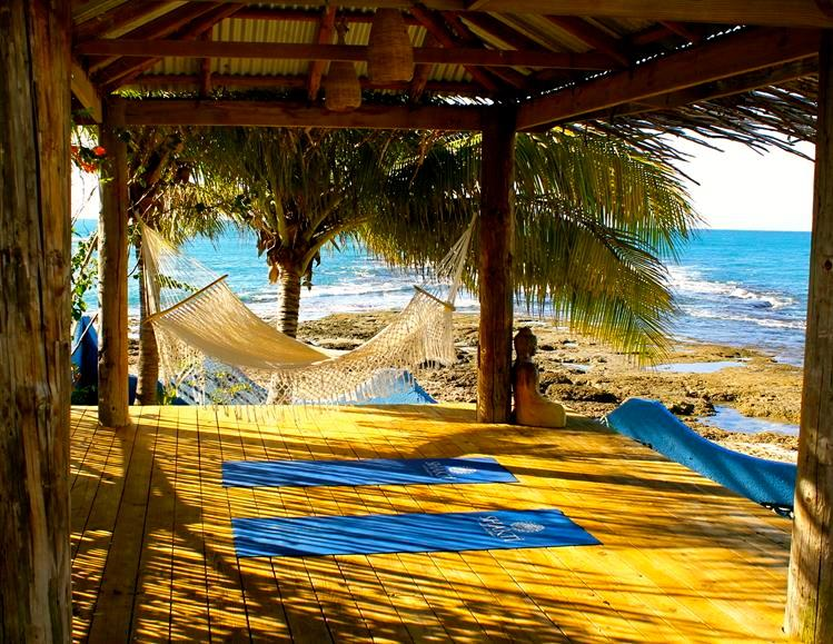 Imagine Yourself on that Hammock right now….. - Shakti Home-The villa you've been dreaming about - Treasure Beach - rentals