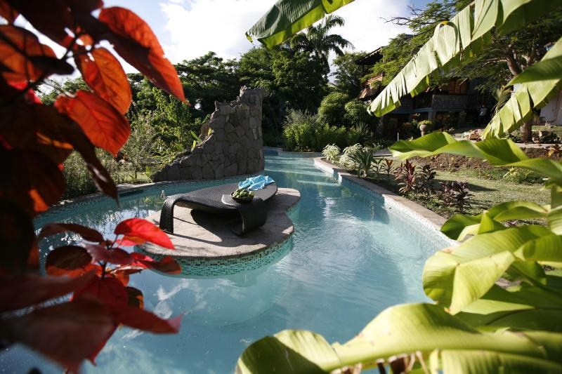 Pool - CLV Luxury fully staffed Flamboyant Villa - Gros Islet - rentals