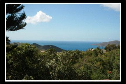 The View - You CAN AFFORD ELEGANCE at Wintberg Place. - Saint Thomas - rentals