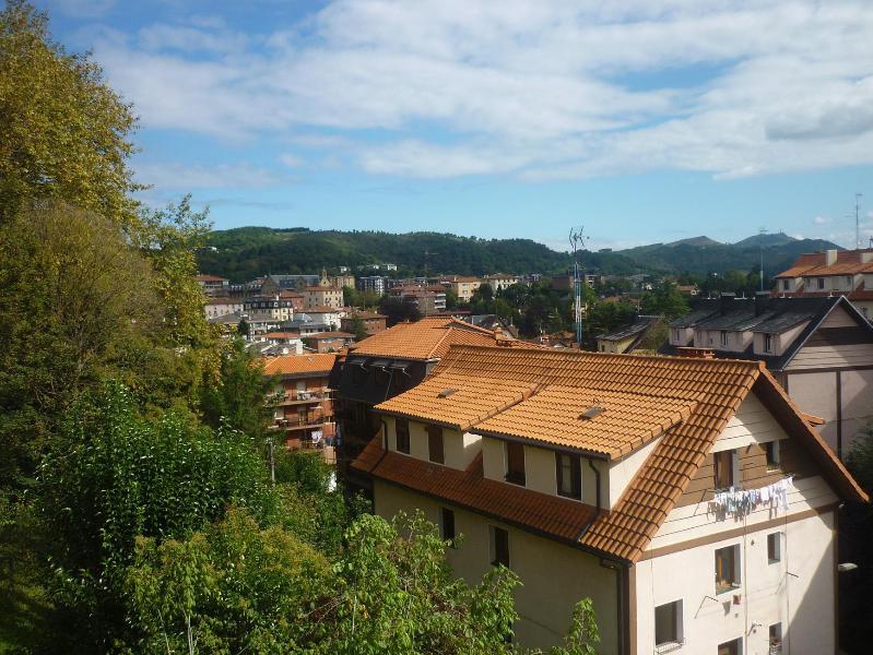 View from the Apartment - Charming Piso Kabi in San Sebastian. Free Wifi! - San Sebastian - Donostia - rentals