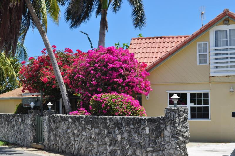 street view - Tiki House Grand Cayman, Seven Mile Beach Area - Grand Cayman - rentals