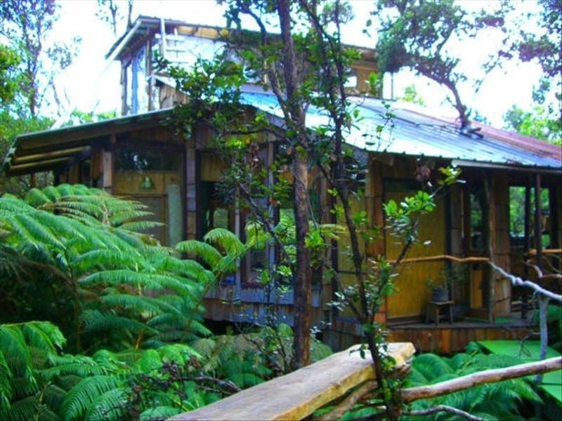 1000+ square feet of luxury treehouse living. Sleeps 6. - Hawaii Volcano Genuine Treehouse rental - Volcano - rentals
