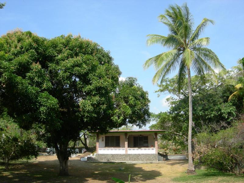 Front of home - large corner lot - lots of fruit trees! - Panama Beach House ~ Super Cute ~ Coronado Panama - Coronado - rentals