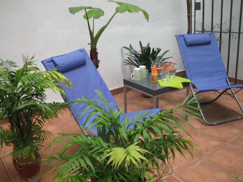 apartment private patio - Tranquil with private patio in the heart of Jerez! - Jerez De La Frontera - rentals