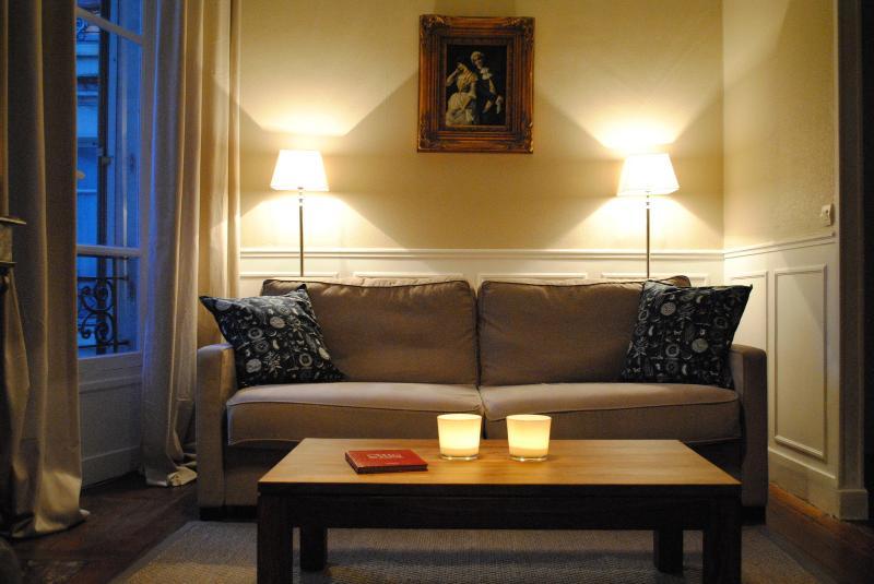 Living Room - Elzevir Onze - The Best One Bedroom in the Marais - Paris - rentals