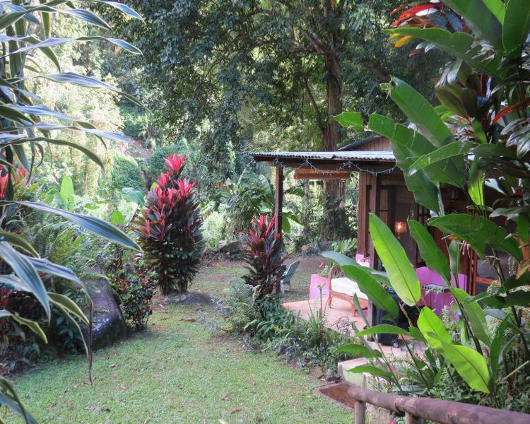 Enchanting garden setting on a river with varity of fish - The Jungle Lodge at Hacienda del Lago - Utuado - rentals