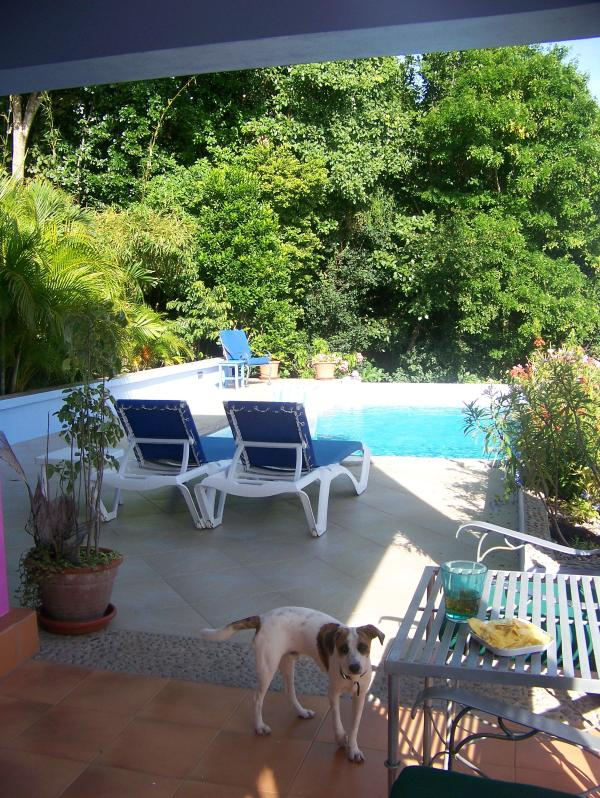 pool and deck from door to apartment terrace - Bella Vista at La Dolce Vita - Bequia - rentals