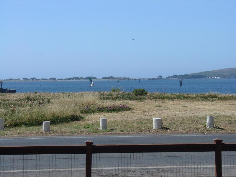 Sweeping view of the bay - Harbor Cutie, Breathtaking Bay View, Charming Home - Bodega Bay - rentals