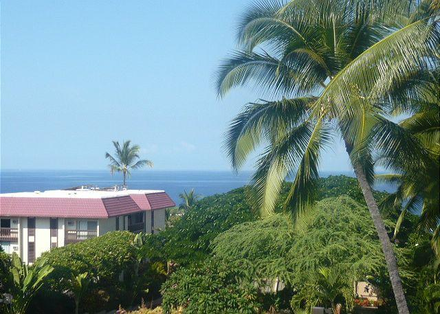 Walk to Town, Ocean View, Designer Interior at Kona Pacific E630 - Image 1 - Kona Coast - rentals