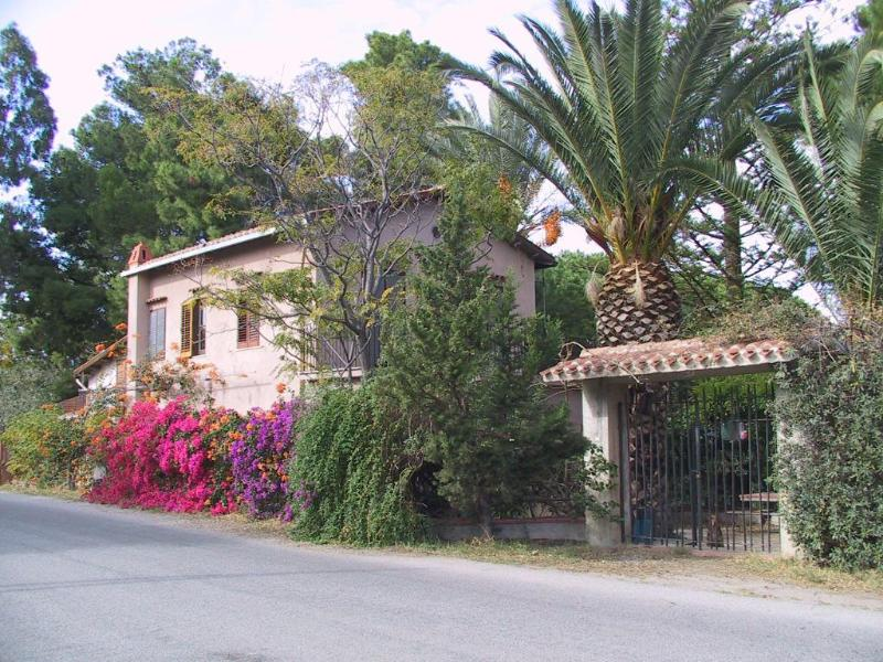 Submerged in nature, the azelea-bathed, palm tree flanked entrance. - Wisteria House: an old Villa submerged in an Oasis - Cefalu - rentals