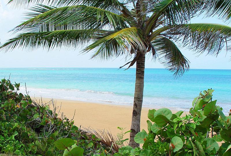 Beach - Palmas del Mar, Puerto Rico  Golf  Casino Beach - Humacao - rentals