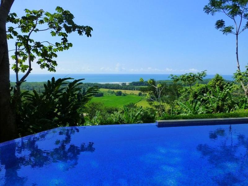 Pool - Buena Vista - Luxury, Views &  On-site concierge! - Dominical - rentals