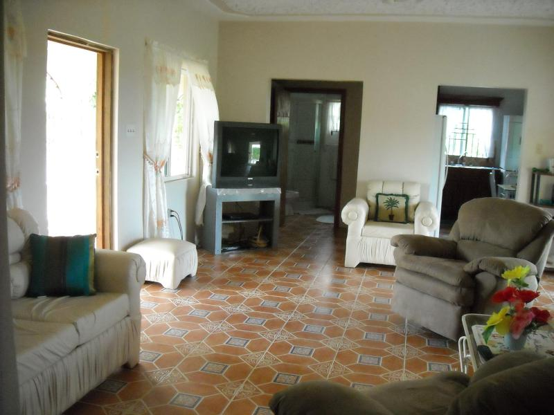 LIVING AREA - Rose Apple Villa Jamaica Vacation Ocean View Pool - Priory - rentals
