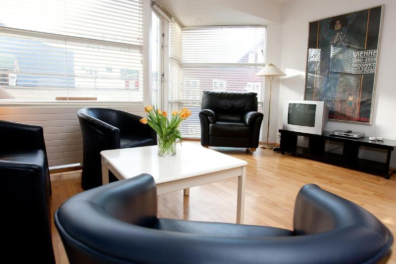 Example of a living room - Reykjavik Centro Apartments (2 persons) - Reykjavik - rentals