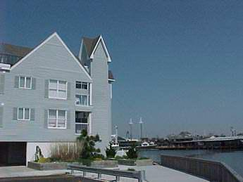 Property 8848 - Amazing 2 Bedroom-2 Bathroom Condo in Cape May (8848) - Cape May - rentals