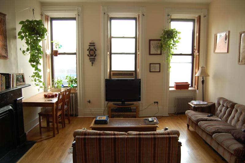 spacious apartment in a townhouse - Image 1 - New York City - rentals