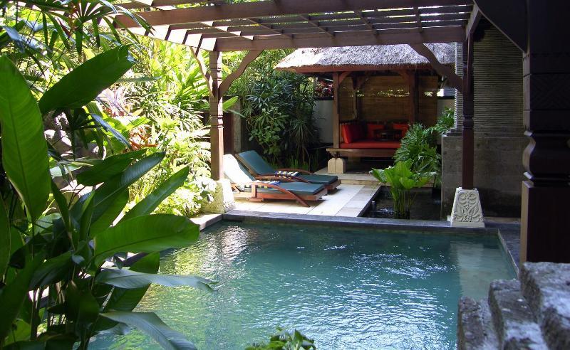 Private Pool and Garden - Luxury Apartment with Private Pool - Nusa Dua - Nusa Dua - rentals