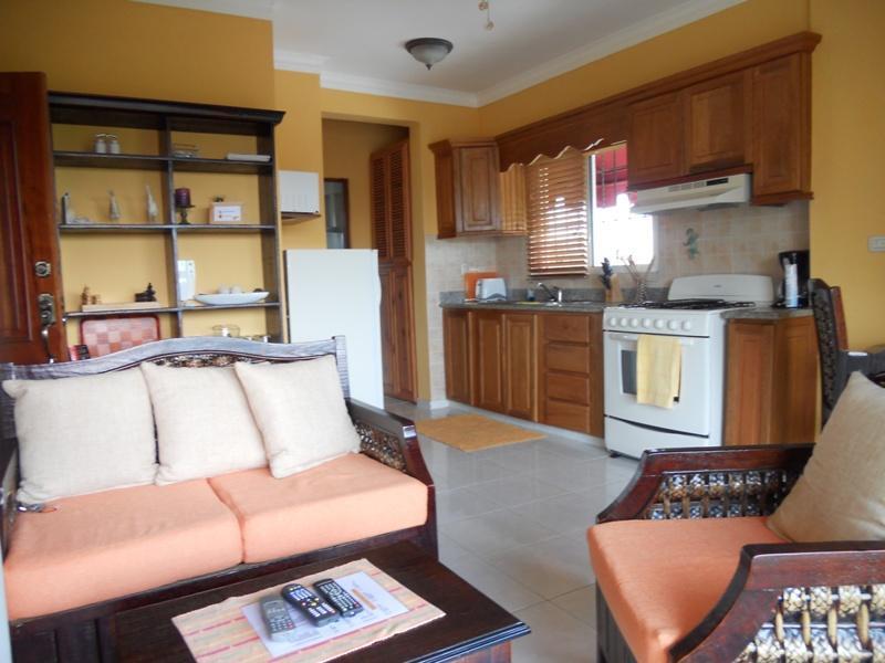 Elegant and cozy 1-BR apartment for you - Image 1 - Santo Domingo - rentals