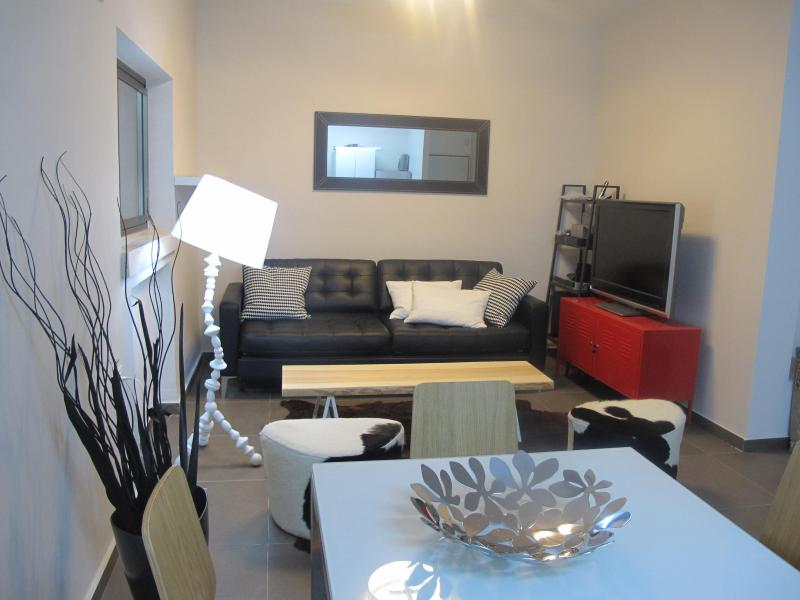 LivingRoom - Charming and Stylish 2bd in City Center - Jerusalem - rentals