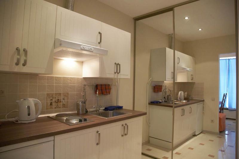 Gorohovaya ul. 33(studio B) - Adelson's House - Image 1 - Saint Petersburg - rentals