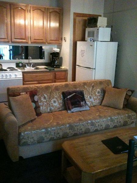 Kitchenette/sleeper sofa - Cozy 2 BR (email: hidden)itash Mt Village Ski area - Bartlett - rentals