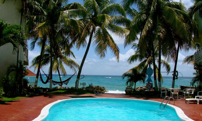 View of the caribbean  sea - SPECTACULAR OCEAN FRONT condo, Wifi ,Pool, Beach, - Ocho Rios - rentals