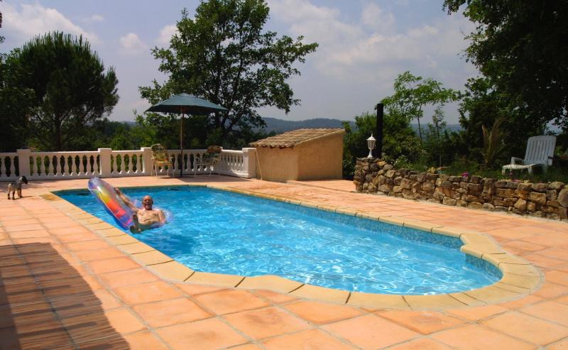 pool and Terrace - Villa Amboise- 5 Bedroom Rental with a Pool, Terrace, and Grill - Montauroux - rentals