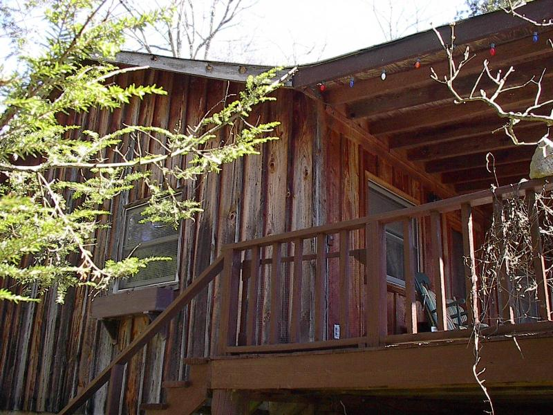 Cabin - Located in Pisgah National Forest! - Clyde - rentals