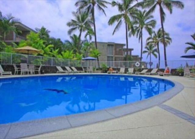 Alii Villas 340 Gorgeous Upperfloor Condo! $80 per night all July-September - Image 1 - Kailua-Kona - rentals
