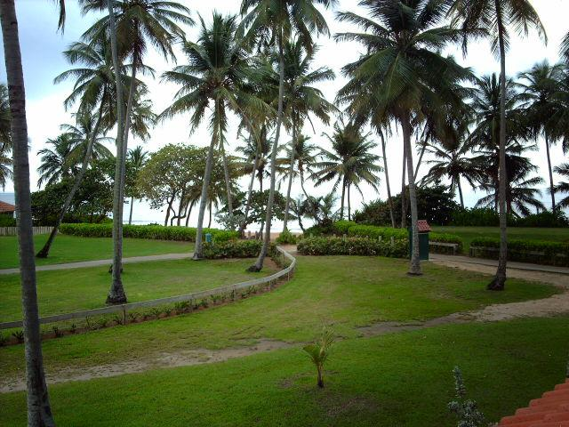 BEACH VILLA 244 - Image 1 - Humacao - rentals