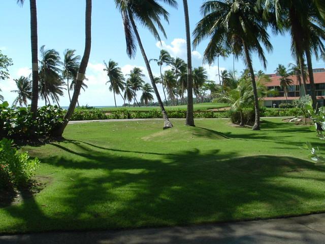 BEACH VILLA 227 - Image 1 - Humacao - rentals
