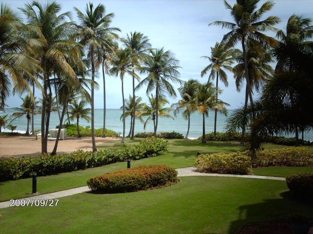 CRESCENT BEACH 146 - Image 1 - Humacao - rentals